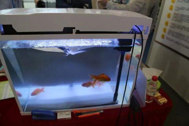 Vykurovacia grafénová fólia v akváriu